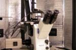 Asylum MFP-3D Bio System w/ Olympus IX71 Inverted Microscope