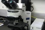 The Olympus BX41 Fluorescence Microscope